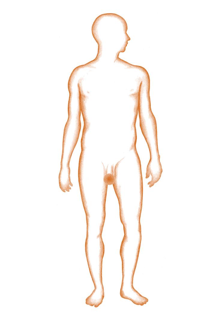 Penis krebs symptome